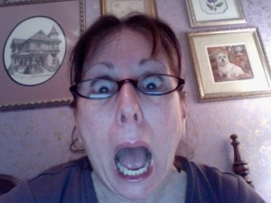 Lynn Kelley, Lynn Kelley Author, children's author, Curse of the Double Digits, BBH McChiller, Monster Moon Mysteries,