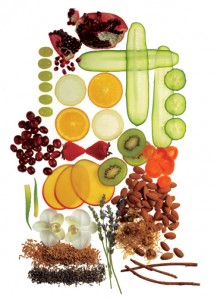 Fruit_Botanicals_web