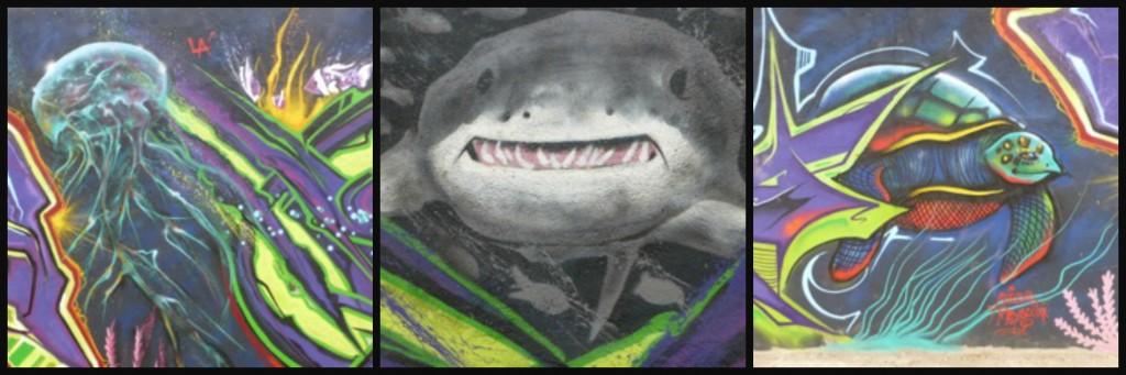 JellyFishSharkCollage-1024x341